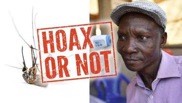 Viral! Nyamuk Mati Gegara Bau Kentut Pria di Uganda, Ini Fakta Sebenarnya