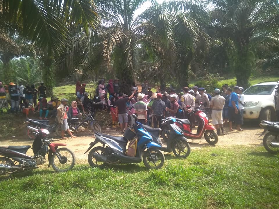 Sejumlah petani Bidar Alam sedang berkumpul di lokasi perkebunan.